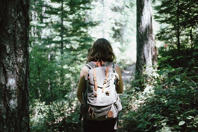 Quel équipement pour survivre pendant une randonnée ?
